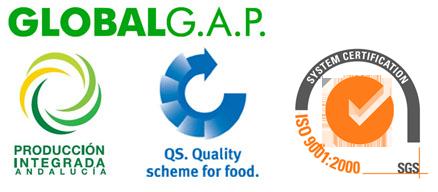 logos_calidad